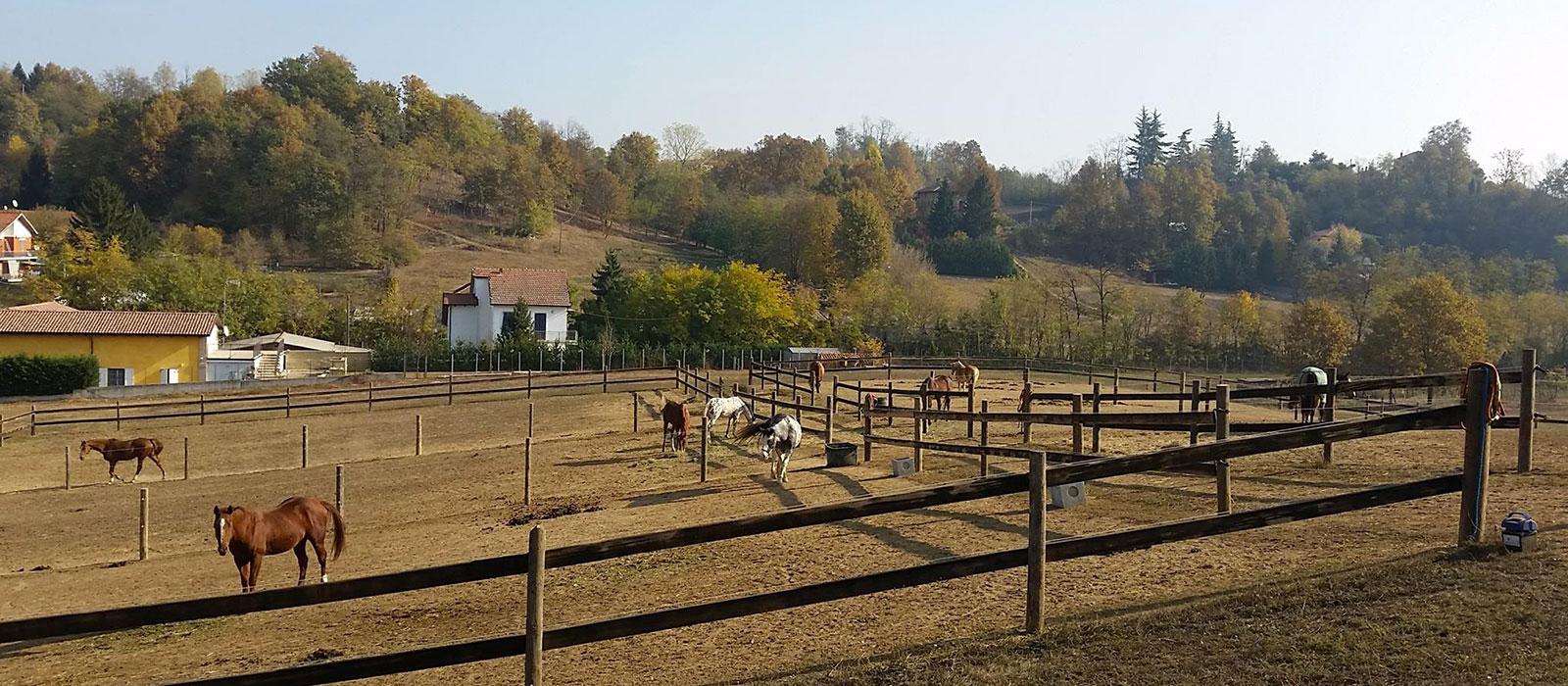 Il Paddock del Monferrato